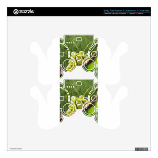 White grapes on the vine . Tuscany, Italy PS3 Controller Skins
