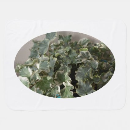white green ivy pretty plant design baby blankets
