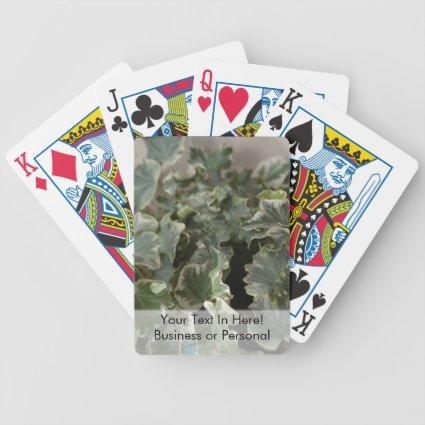 white green ivy pretty plant design card decks