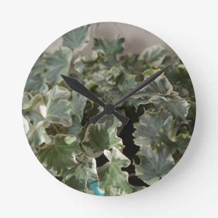 white green ivy pretty plant design round wallclock