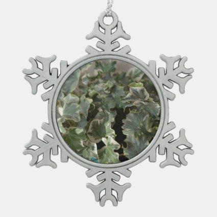 white green ivy pretty plant design ornaments