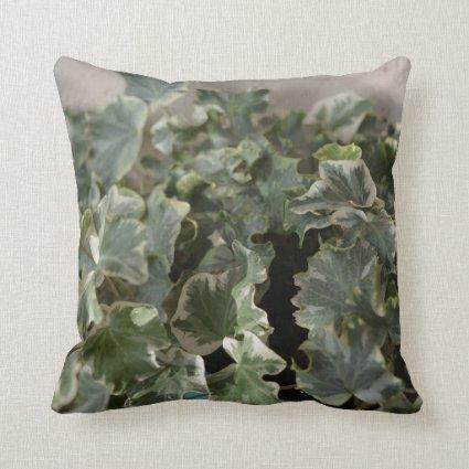 white green ivy pretty plant design throw pillow