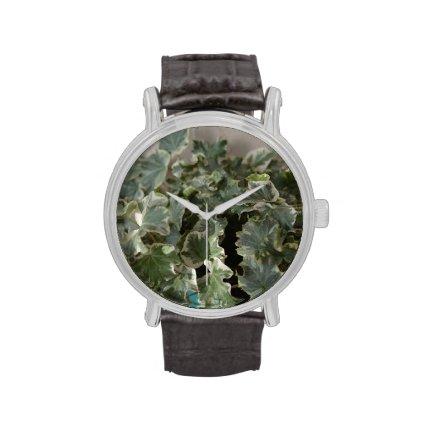 white green ivy pretty plant design watch