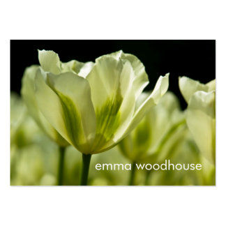 White & Green Variegated Tulips DSC0856 Large Business Cards (Pack Of 100)