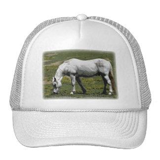 White / Grey Horse Hats