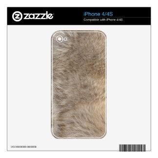 White Grey Wolf Fur Wildlife iPhone 4 Skin