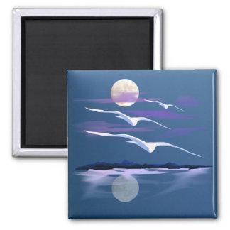 White Gulls  Magnet