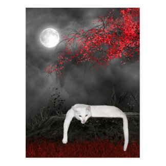 White Halloween cat Postcard