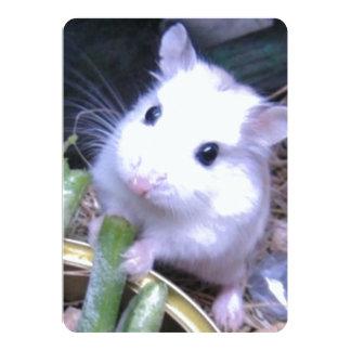 White Hamster Card