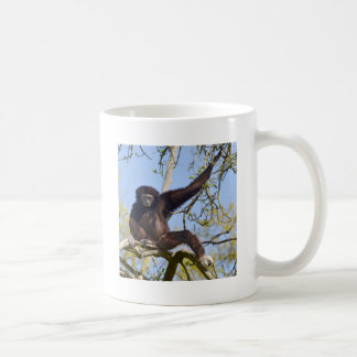 White-handed gibbon in tree coffee mug