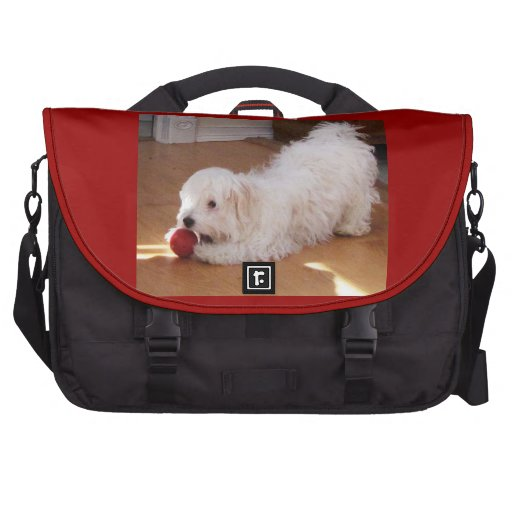 White Havanese Puppy Playing with Red Ball Laptop Messenger Bag