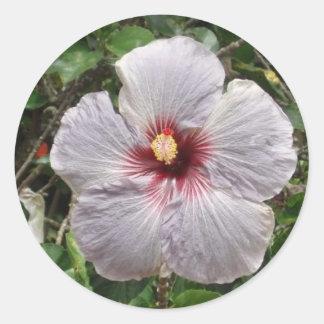 white hawaii classic round sticker