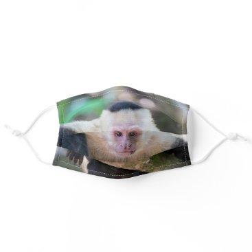White headed capuchin monkey resting - Costa Rica Cloth Face Mask