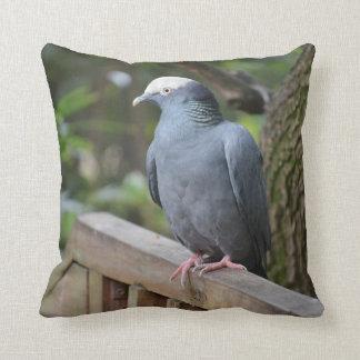 white headed pigeon on deck rail bird throw pillow