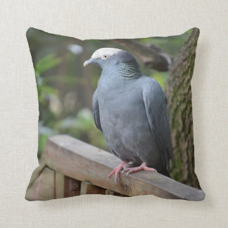 white headed pigeon on deck rail bird throw pillow