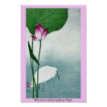 White heron and lotus by Baison, Ukiyoe Poster
