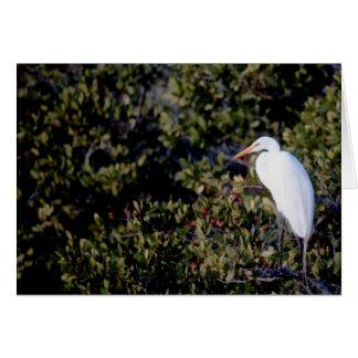 White Heron Card
