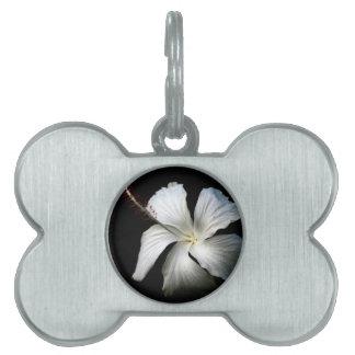 White hibiscus against black.jpg pet name tags