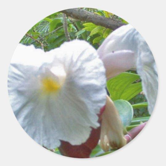White Hibiscus Classic Round Sticker