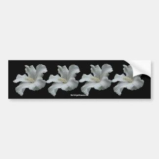 White Hibiscus Flower Photo Bumper Sticker
