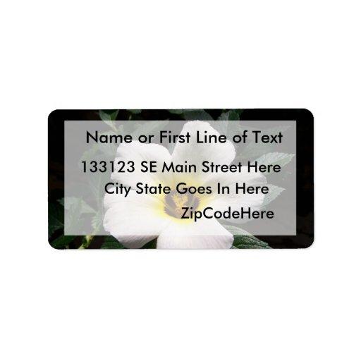 White hibiscus flower red center dark background personalized address label