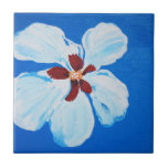White Hibiscus on Blue Tile