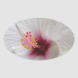 White Hibiscus Oval Sticker