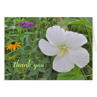 "White Hibiscus ""Thank You""  notecard"