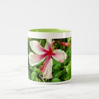 White Hibiscus Two-Tone Coffee Mug