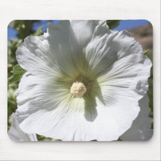 White Hollyhock Blossom Mouse Pad