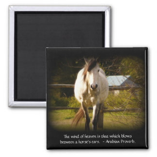 White Horse and Arabian Proverb Heavenly Magnet