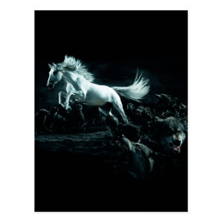 White Horse and The Attack of Wild Wolves Postcard
