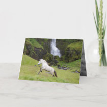 White Horse and the Waterfall Horse Greeting Card
