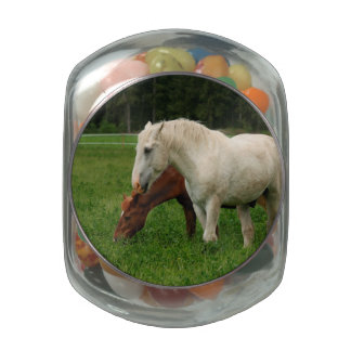 White Horse Animal Jelly Belly Candy Jars