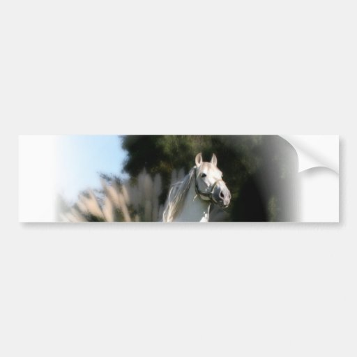 White Horse Bumper Sticker