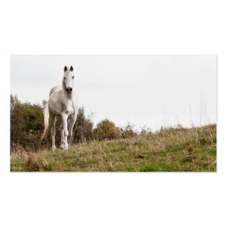 White horse Double-Sided standard business cards (Pack of 100)