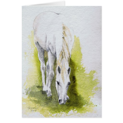 White Horse Cards