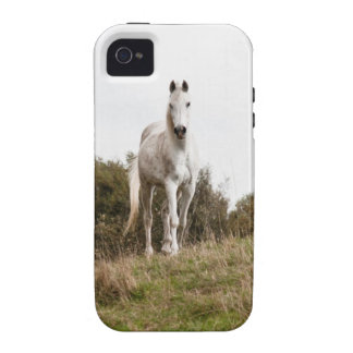 White horse Case-Mate iPhone 4 covers