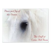 White Horse Christmas Holiday 2015 Calendar Card