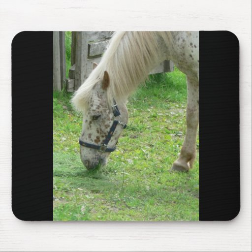 White Horse Close Up Mouse Mats