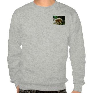 White Horse Closeup Pull Over Sweatshirt