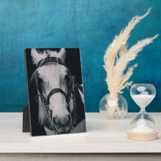White Horse face Gift Plaque