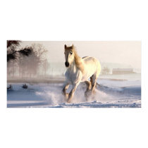White Horse Galloping Through the Winter Snow Card
