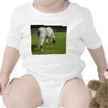white horse grazing head down in grass bodysuit