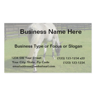 white horse grazing head down in grass business card