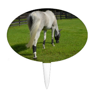 white horse grazing head down in grass cake topper