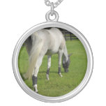 white horse grazing head down in grass necklaces
