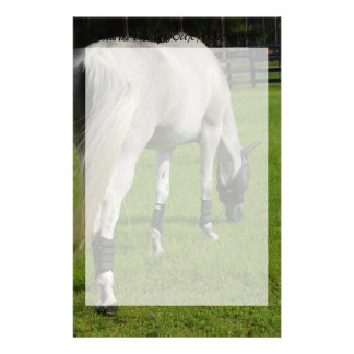 white horse grazing head down in grass stationery