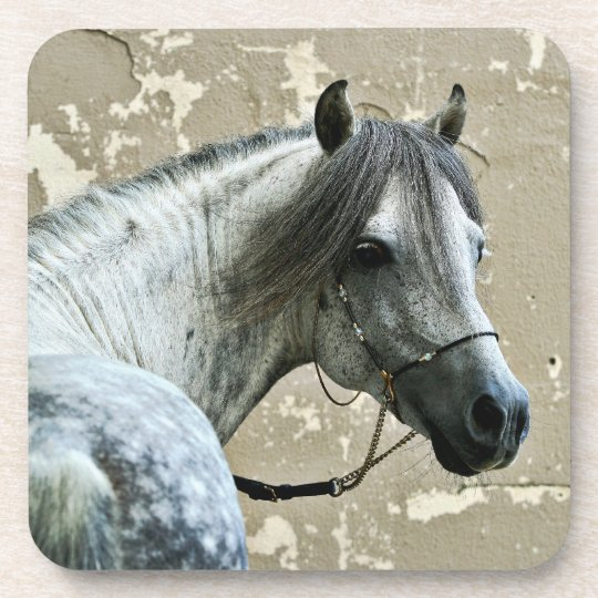 White Horse Head Drink Coaster