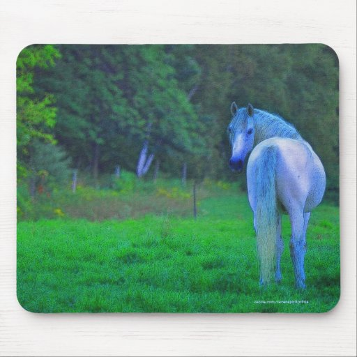 White Horse in Field at Midnight Art Mousepad
